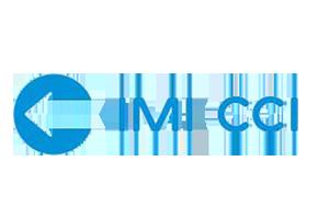 imi-cci-valve-tems-logo